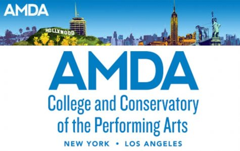 Review of AMDA