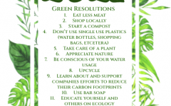 Ecological New Year